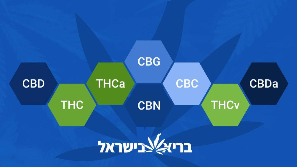 מה ההבדל בין THC ל-CBD?