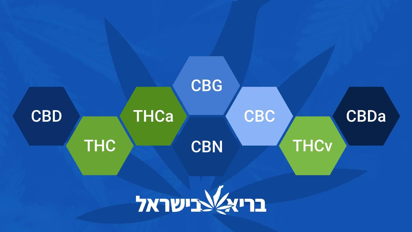 מה ההבדל בין THC ל-CBD? - בריא בישראל