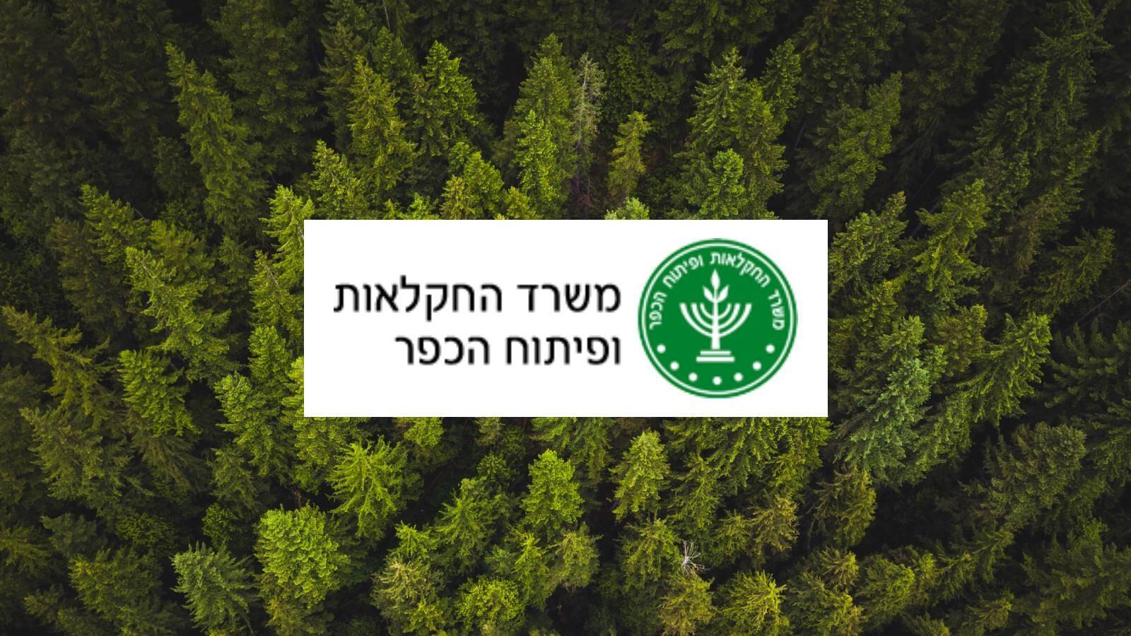 משרד החקלאות: קנאביס יכול לרפא סרטן - בריא בישראל